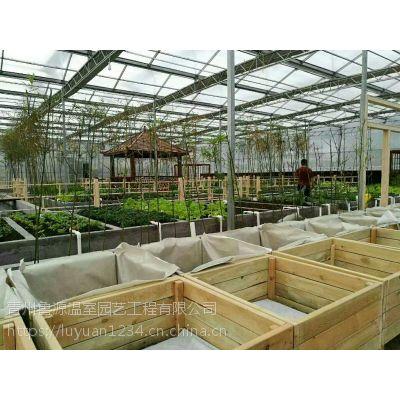 四川自贡玻璃大棚内遮阳系统防雾防滴节能保温多种类型幕布配套齐全厂家