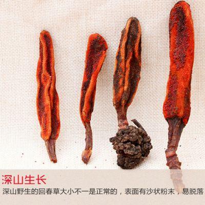 彝山香常年批发回春草、风流果、草苁蓉1000克