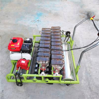 生产定做手推蔬菜精播机 轻便型农用免间苗播种机厂家