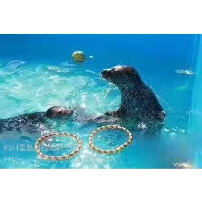杭州的 动物出租比济南的便宜