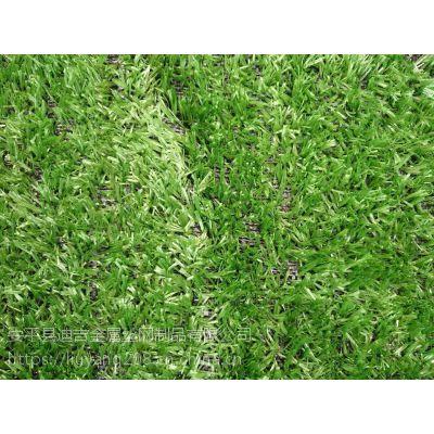 pe人造草坪 2*25m双色草坪网 绿色围挡 环保草皮