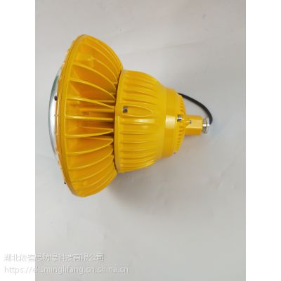 RLEEXL608-吊杆式LED防爆照明灯100w