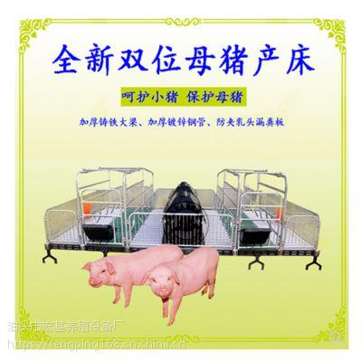 出售分娩母猪高培栏复合母猪产床猪用设备