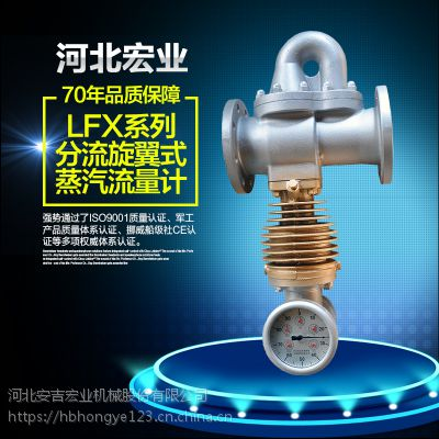 旋翼式LFX蒸汽流量计 指针型蒸汽流量计