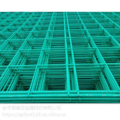 专供绿色养殖蘑菇网 绿色浸塑蘑菇网片生产厂家
