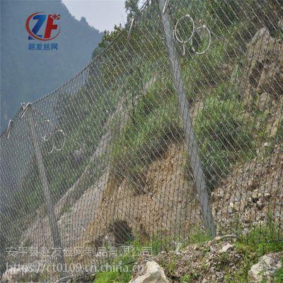 衡水防护网.山体防护网厂家.山体边坡护山网