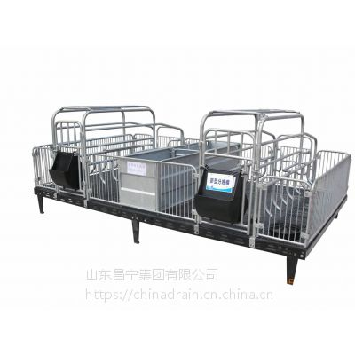 厂家直销 大型养猪场现代自动化养猪设备-金属分娩床-保育床