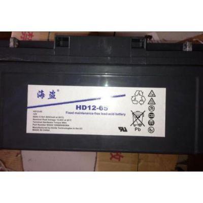 美国海盗蓄电池HD12-65AH海盗蓄电池12v65AH消防主机专用
