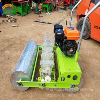芝麻精播机 可调株距萝卜种植机 控制下种量油菜播种机