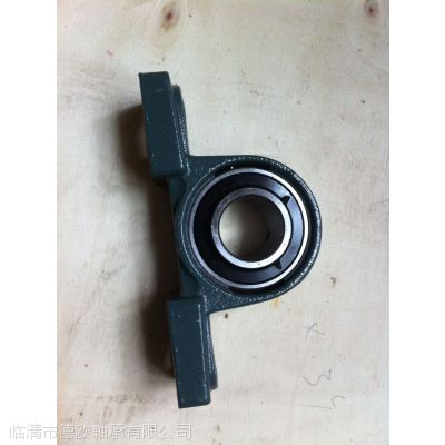 GCR15 GCR11pillow block bearing 25X38X175mm