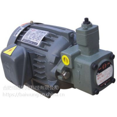 SANYOU油泵电机组合