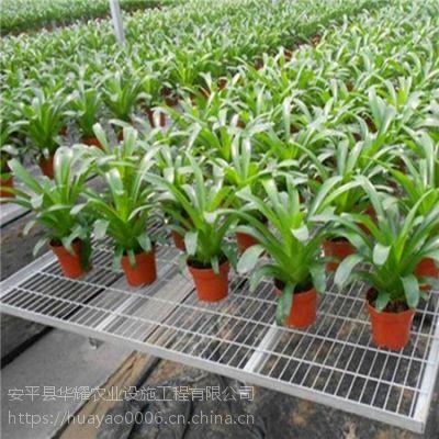 上海花卉钢丝网自动化移动苗床安装指导