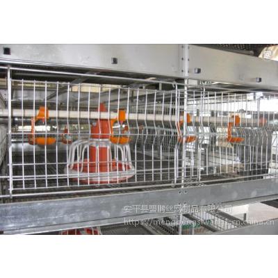 鹌鹑养殖三层立式肉鸡笼 肉鸡养殖大型笼具 质量