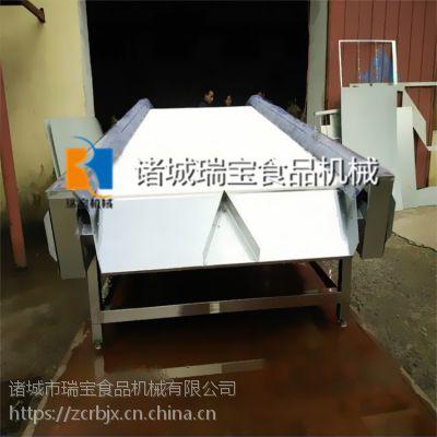 瑞宝CG-3000型大蒜清洗擦干机 蒜米清洗包装擦干机