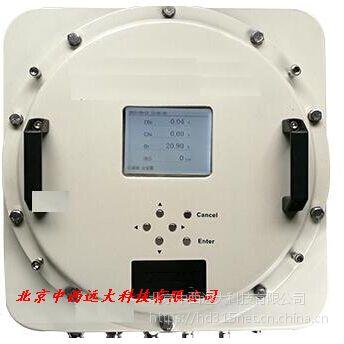 中西 红外气体分析仪(防爆型)沼气 型号:RY03-3500库号:M400803