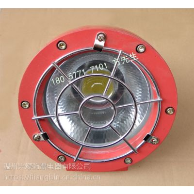 DGS24/127L(A)矿用隔爆型LED投光灯