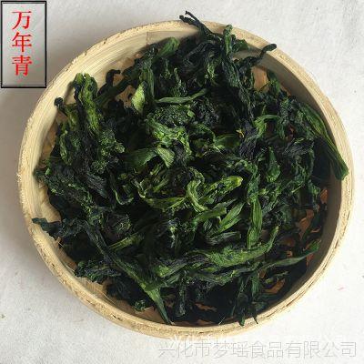麦景园脱水蔬菜 万年青菜干 干菜 橄榄菜 菜心干1公斤 批发