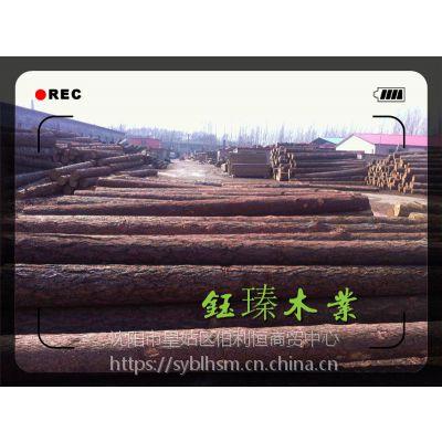 长春建筑用木方木材批发尺寸足尺质量一等
