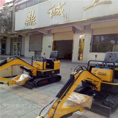 广东惠州1吨电动挖掘机 挖沟挖坑专用鼎诚小型履带式小挖机市政可用小勾机DC-1.0