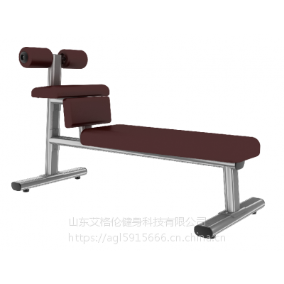 室内健身器材,山东德州艾格伦腹肌训练椅,腹部训练,山东德州宁津健身器材批发