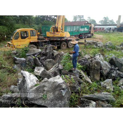 产地批发优质英石 庭院假山石 海南驳岸石 造景石