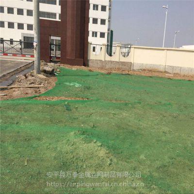 绿化三针盖土网 工地裸露盖土网 防沙尘专用网