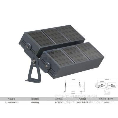 拓龙照明批发 专属定制 LED方形 模组投光灯 220V AC小角度 窄光束 投射灯